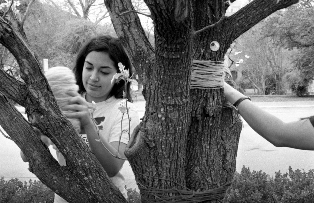 Students decorate tree during big art day UT Austin campus