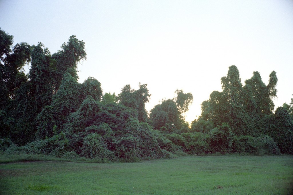 Riverside Park, Victoria, TX
